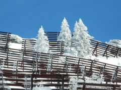 Auf dem Arlberg 2