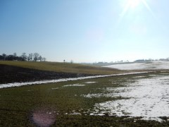 auf den Feldern vor Sierning.jpg