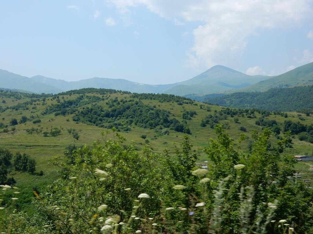 gruenes-armenien-1