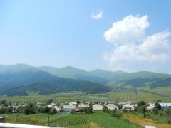 gruenes-armenien-2