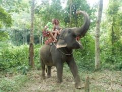 ko-chang-ritt-auf-dem-elefanten