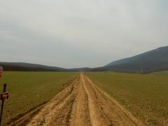 weiter-weg-1