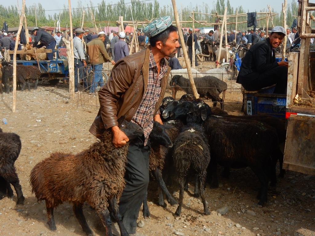 kashgar-viehmarkt-8