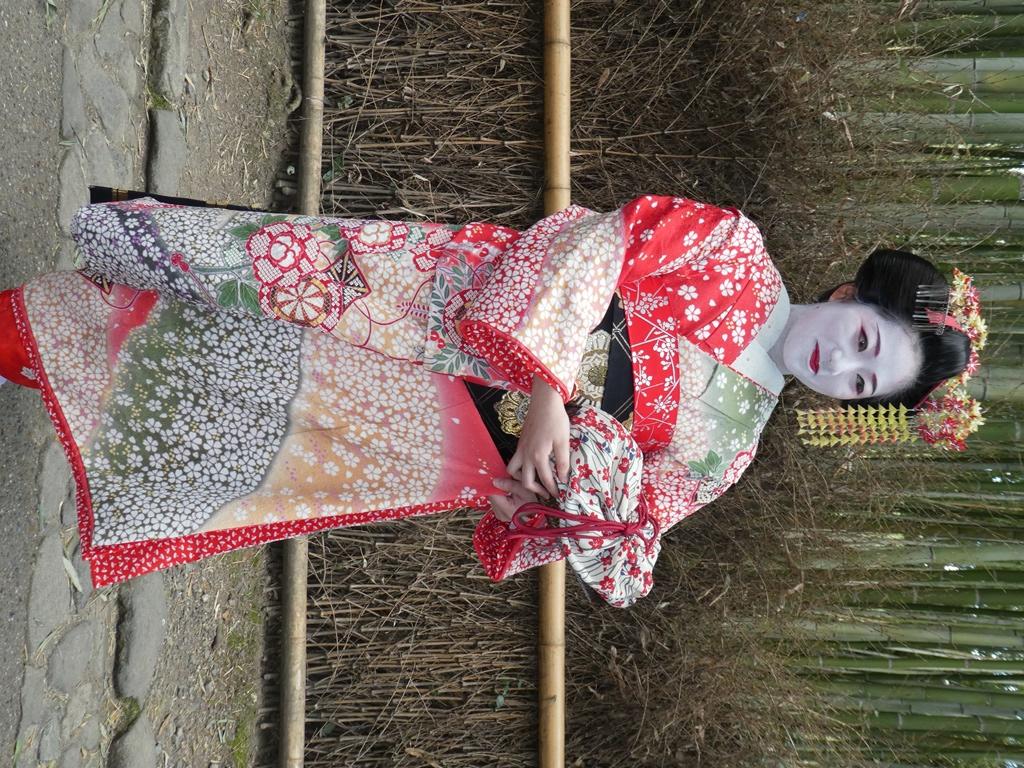 eine-geisha-in-kyoto