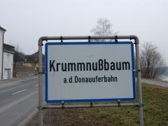 krummnussbaum-an-der-donauuferbahn