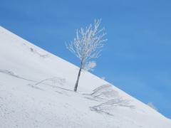 Auf dem Arlberg 3