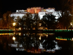 potala-palast-by-night-2