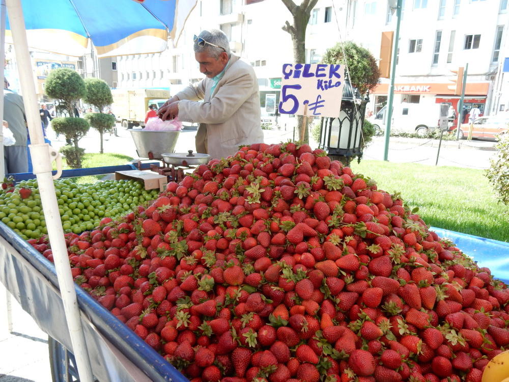 12edirne-erdbeeren