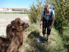 usbek-kamel-2