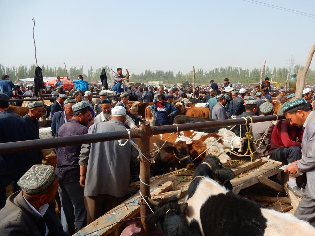 Kashgar Viehmarkt 1