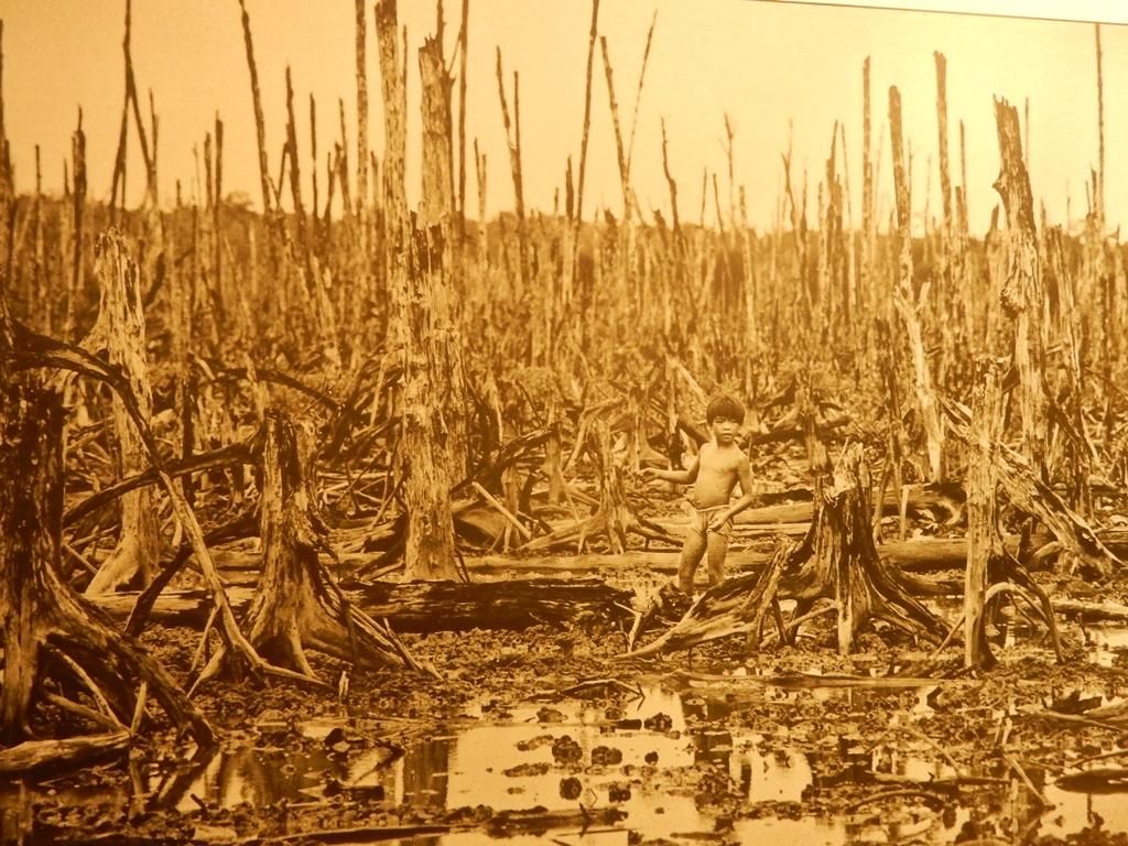 Im War Museum, Vietnamesische Landschaft nach einem Napalm Angriff